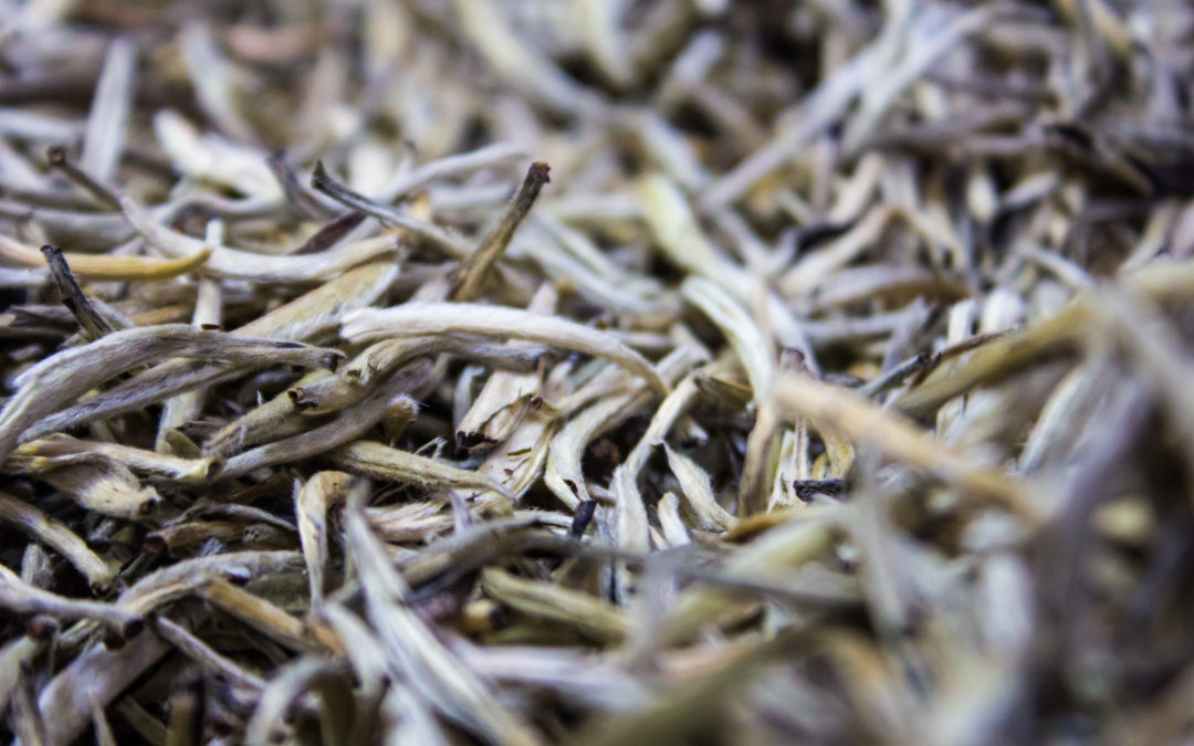 Marketing Growth for Tea Online