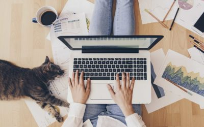 A Creative's Guide to Working From Home